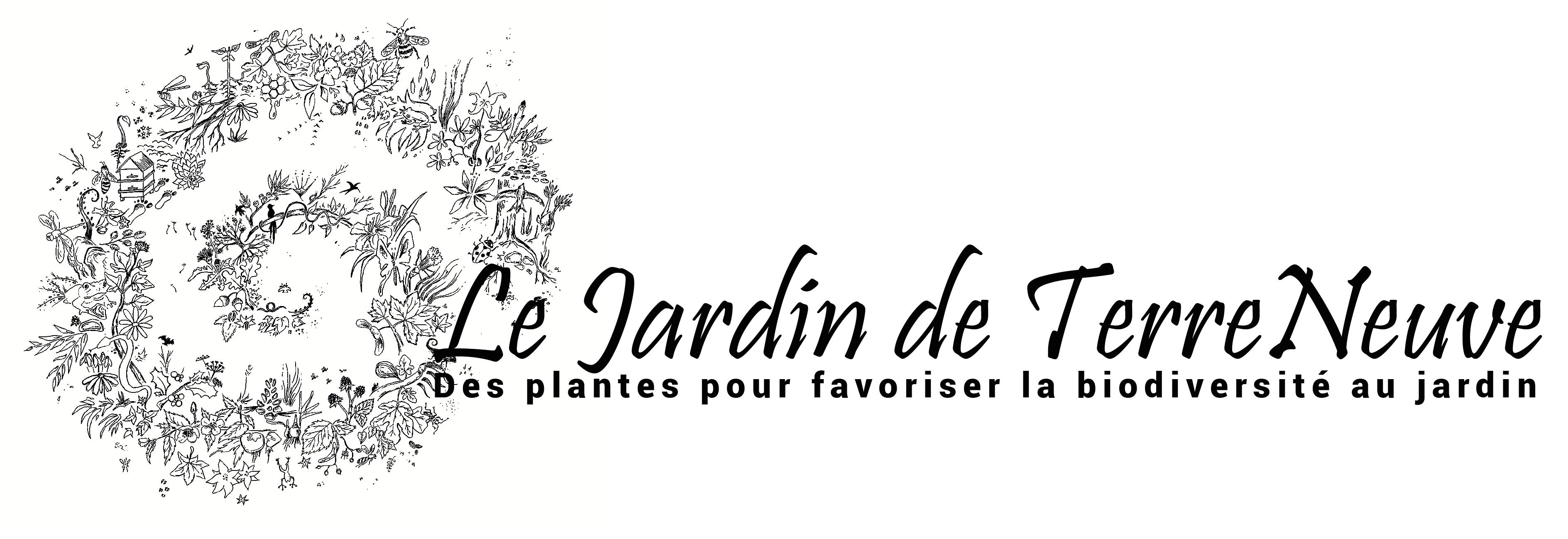 Le jardin de Terre Neuve - Vente de plantes vivaces